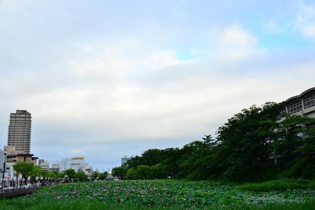 秋田市と解体