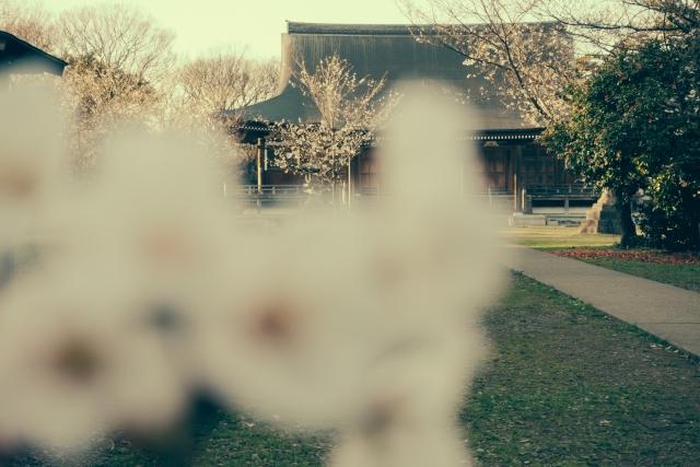 国分寺市の解体
